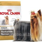 Сухой корм для собак Royal Canin Yorkshire Terrier 28 Adult 7,5 кг фото