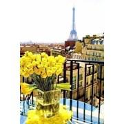Тур в Париж фото