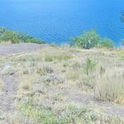 Продам земельный участок 10 соток г.Алушта мкрн.Эврика АР Крым фото