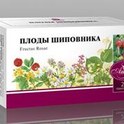 Напитки чайные на основе целебных трав Плоды шиповника фото