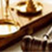 Ведение дел в гражданском и уголовном процессе. фото