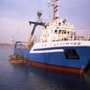 Малый рыболовный траулер типа Балтика фото