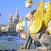 Бизнес-туризм и инсентив-программы в России фото