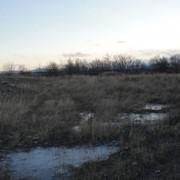 Земельные участки в Елизово под ИЖС фото