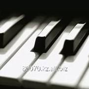 Перевозка пианино в Алматы фото