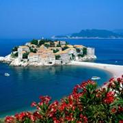 Черногория - горящие туры! фото