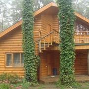 Вагонка деревянная оптом в Украине фото