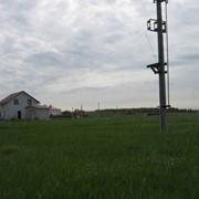Белогородка участок 10 соток массив Солнечный-2. Риелтор: Василий фото