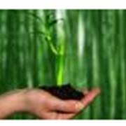 Сопровождение предприятий по экологическим вопросам фото