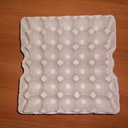 Бугорчатая прокладка для яиц фото