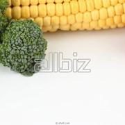 Продукты народного потребления Узбекистан фото