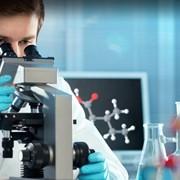 Инновационный бизнес в сфере медицины. фото