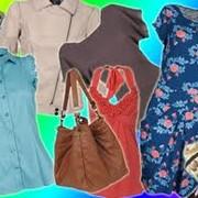 Одежда модная фото