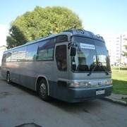 Автобус перевозка. Kia grand bird, 45 мест  фото