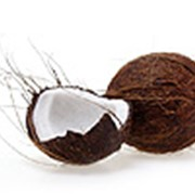 Хурма (Persimmon, Kaki) Манго (Mango) Кокос (Coconut) Киви (Kiwi) Гранат (Pomegranate) Бананы (Banana) Ананас (Pineapple) Айва (Quince) фото