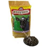 УВМКК «Фелуцен» для телят гранулы фото