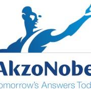 Системы отверждения Akzo Nobel фото