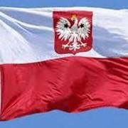 Иммиграция в Польшу фото