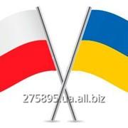 Рабочая виза в Польшу фото