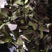 Маскировочная сеть сетку Англия синтетическая 11,5мх11,5м фото