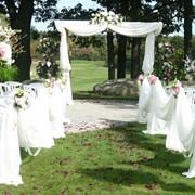 Организация свадьбы фото