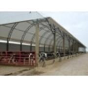 Быстро-возводимая животноводческая ферма, легко-разборный ангар для сельхозпродукции, лёгкий склад фото