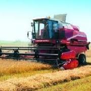 Уборка урожая зерновыми комбайнами, уборка урожая, уборка урожая зерновых культур, осенняя уборка урожая, участвовать в уборке урожая фото