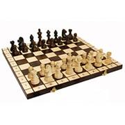 Шахматы Стаунтон Мадон фото