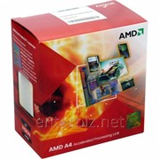 Процессор AMD A4 X2 4000 (Socket FM2) Box (AD4000OKHLBOX) фото
