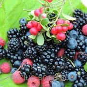 Лесные ягоды отдушка-10 мл фото