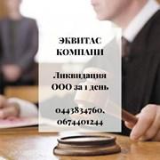 Ліквідація ТОВ за 1 день Одеса. фото