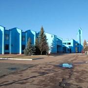 Нежилое здание в Чернигове фото