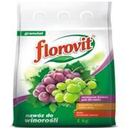 """Удобрение """"Для винограда"""" (FLOROVIT), коробка картон 1 кг фото"""