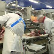 Спецодежда и специнвентарь для мясо-молочной промышленности. фото
