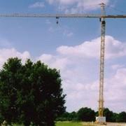 Аренда башенного крана POTAIN MC310K12 фото
