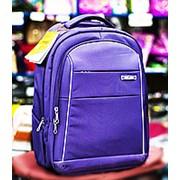 Рюкзак на колесахAsialeopard 34х20х50см фиолетовый фото