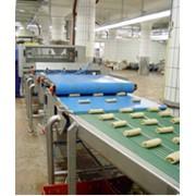 Линия для производства блинов с начинкой BECAM (Франция) фото