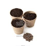 Посевной материал,семена овощей фото