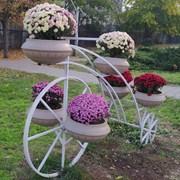 БлагоУстройстВо Декор из Металла Дерева Сад Парк фото