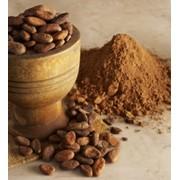 Какао натуральный фото