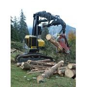 Харвестер гусеничный TimberPro TL735C фото