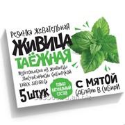 Смолка Живица таёжная с мятой - натуральная жевательная резинка фото