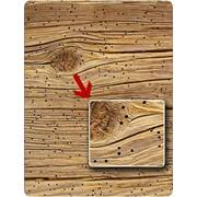 Уничтожение вредителей дерева деревянных домов фото