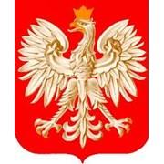 Обучения в Польше фото