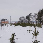 Бобрица, участок 5 соток Д/К Сузирье. Риелтор: Анастасия фото