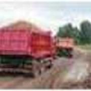 Перевозки автомобильные бестарных и насыпных грузов фото