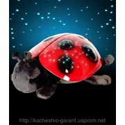 Ночник - проектор звездного неба Божья коровка фото