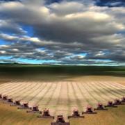 Уборка сбор обмолот урожая зерновых культур фото