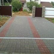Устройство покрытия из тротуарной плитки фото