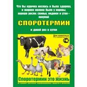 Пробиотик Споротермин для стимуляции роста и лечения сельскохозяйственных животных фото